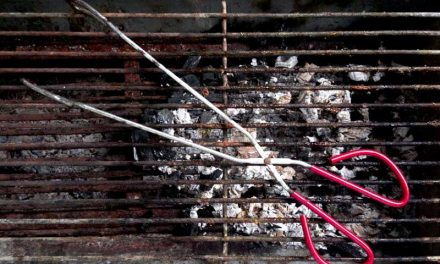 What Happens If You Don't Clean Your Grill?